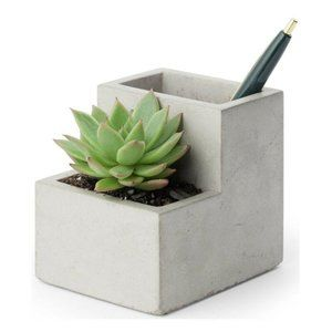 Kikkerland Concrete Succulent Planter Small Desk O